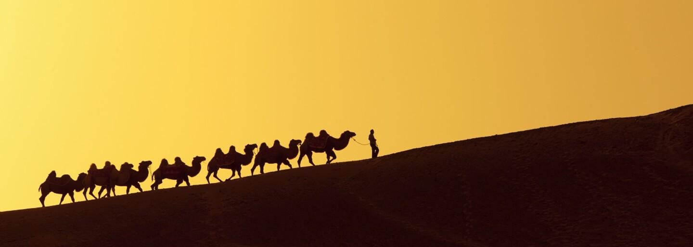 Silk Road – online tržiště, kde seženete vše, od drog až po samopal nebo nájemnou vraždu