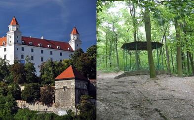 Skončí sa výrub v bratislavských lesoch? Mestský lesopark by sa mal stať novým národným parkom