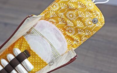 Skotsko začne zdarma poskytovat menstruační pomůcky ženám, které mají nízký příjem
