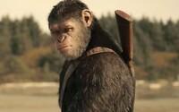 Skvelá Vojna o planétu opíc divákov do kinosál nedostala. Bude z filmu komerčný prepadák?