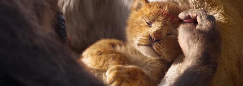 Skvělé video porovnává původního Lvího krále s novým trailerem. Užij si nostalgii a vtipné obrázky Simby jako Thanose