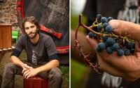 Šli sme do viníc za Michalom Bažalíkom. Takto vyzerá život mladého vinára, ktorý sa z veľkomesta presťahoval do maringotky