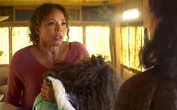Slobodná matka musí pre záchranu dcéry vraždiť. Režisér hororu od Stephena Kinga natočil krvavú jazdu