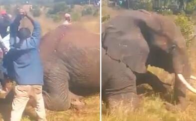 Slon si pri úteku pred dedinčami zlomil nohu, sekerami a mačetami nakoniec zviera dorazili