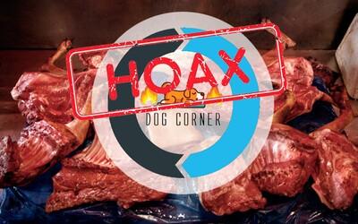 Slováci naletěli restauraci, která chce podávat psy. V rozhořčených komentářích nadávají majiteli smyšleného podniku
