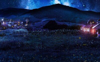 Slováci si v malej dedinke na východe otvorili prvý spánkový rezort na svete. Dobrú noc v ňom dávajú líšky