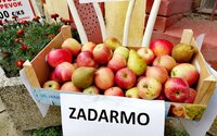 Slováci vo veľkom začali rozdávať svoje jablká zadarmo. Inšpirácia z Nórska dokonca neprišla prvá