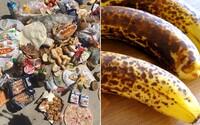 Slováci vyhadzujú desiatky kíl potravín ešte v záruke. Najnovšie analýzy naznačujú, že by sme sa mali poriadne zamyslieť