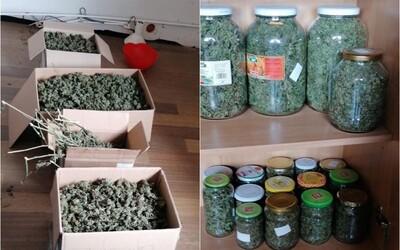 Slovák mal doma 18 kíl marihuany, hrozí mu 25-ročné väzenie. Sušinu ukrýval v krabiciach, vo vedrách aj v zaváraninových fľašiach
