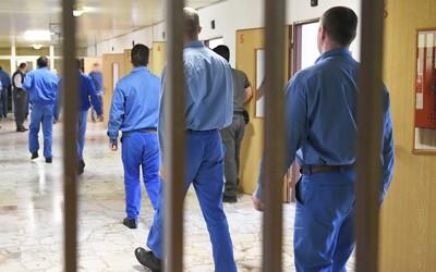 Slovák si odpykával dvojročný trest za krádež plastovej hračky, no kvôli bitke vo väzení zostane ochrnutý