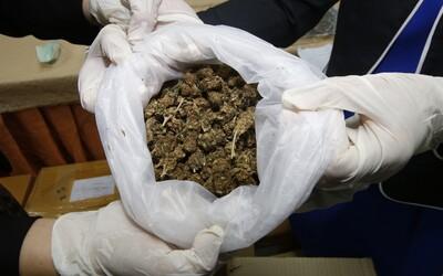 Slovákovi hrozí doživotí za pěstování marihuany. Policisté zabavili 33 kg rostliny, prý ji potřeboval na mastičku pro mámu