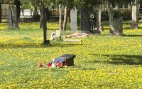 Slovenka sa opaľovala na cintoríne v centre Bratislavy, hneď vedľa hrobov prezidenta Kováča a Júliusa Satinského