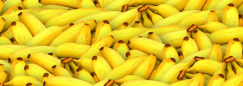 Slovenka žila v Dánsku z toho, čo ľudia nechceli. Vyhadzujeme banány, ktoré si ich zberači nemôžu dovoliť kúpiť, hovorí Viktória
