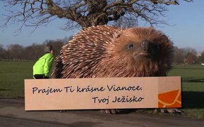 Slovenská pošta nahradila Ježiška obrovským Ježiskom. Chyba v liste deťom teraz zabáva ľudí na internete