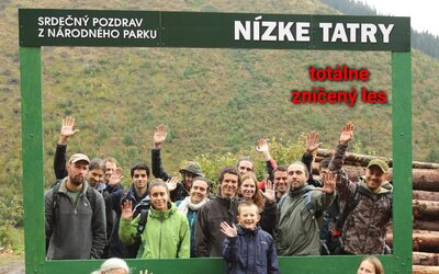 Slovenskí ochranári posielajú ironický pozdrav z obrovskej pohľadnice. Nízke Tatry sa menia na veľké rúbanisko