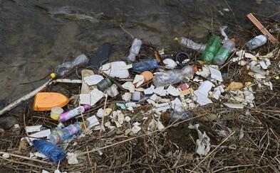 Slovensko podľa Greenpeace stále nerobí dosť v rámci boja o záchranu planéty. Štát nesúhlasí