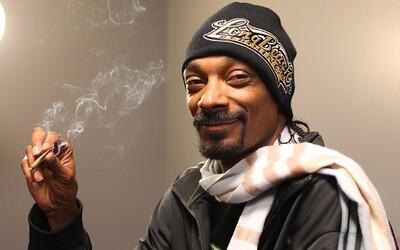 Snoop Dogg rozbehol encyklopédiu o marihuane s názvom Merry Jane. Nájdeš v nej všetko dôležité zo zeleného sveta