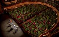 Španělská opera uspořádala první koncert po koronavirové krizi. V hledišti však byly pouze fíkusy a palmy pro zdravotníky