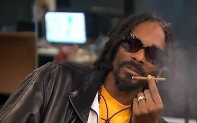Spoločnosť ponúka 36-tisíc dolárov ročne za testovanie marihuany s obsahom CBD, ktorú fajčí aj Snoop Dogg