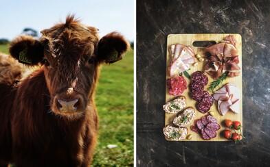 Staň sa vegetariánom alebo zjedz svoje nové domáce zviera