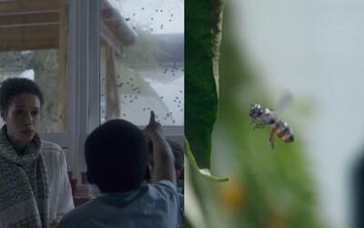 Stane se děsivá část Black Mirror realitou? Robotické včely si chce patentovat společnost Walmart, ale lidé se bojí špionáže