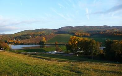 Striebornica: Krásna lokalita v obklopení hlbokých lesov neďaleko Piešťan láka rybárov, výletníkov i Arabov