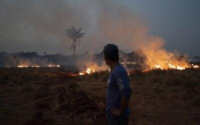 Štve tě, že hoří amazonský prales? Přestaň jíst maso