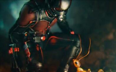 Súťaž: Získajte 30 lístkov na predpremiéru Ant-Mana!