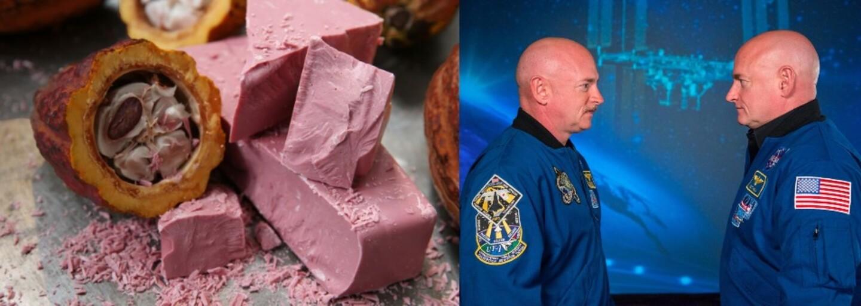 Švajčiarski vedci vymysleli úplne nový druh čokolády. Zabudni na mliečnu, bielu aj tmavú