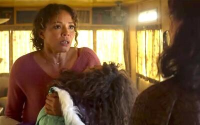Svobodná matka musí pro záchranu dcery vraždit. Režisér hororu od Stephena Kinga natočil krvavou jízdu