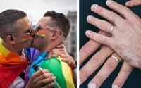 Švýcarský parlament umožní sňatky osob stejného pohlaví. O schválení zákona rozhodnou Švýcaři v referendu