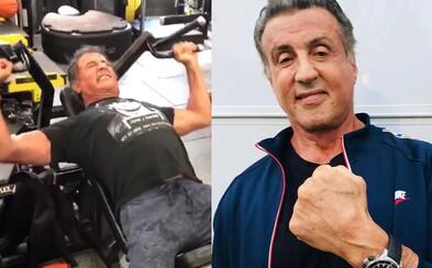 Sylvester Stallone maká v posilovně i po 72. narozeninách. Připravuje se na natáčení nového Ramba