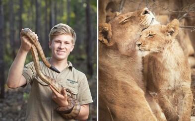 Syn Steva Irwina má len 14 rokov, no stíha pracovať v ZOO. Popri práci so zvieratami sa stihol stať aj uznávaným fotografom