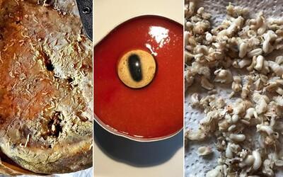 Sýr nacpaný larvami nebo šťáva z ovčích očí. Návštěva nového muzea by v tobě příjemné pocity nezanechala
