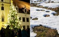 Takéto počasie čaká Slovensko na Štedrý deň. Na rozprávkovú snehovú nádielku môžeme zabudnúť