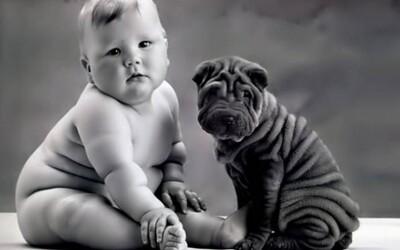 Takto to vyzerá, keď sa psíkovia podobajú na svojich pánov