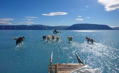 Takto vypadá alarmující tání ledu v Grónsku. Psí spřežení se muselo brodit vodou