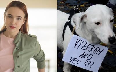 Tam, kde sa porušujú práva zvierat, nastúpi zvierací ombudsman (Rozhovor)