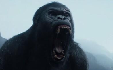 Tarzan sa vracia do afrického Konga, kde je nútený stať sa opäť raz šelmou, aby prežil blížiacu sa vojnu