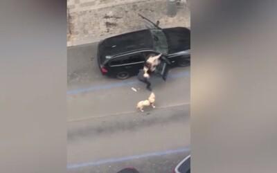 Taxikář vyhodil ze svého auta nevidomou ženu. Vadil mu její vodící pes