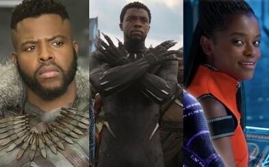 T'Challa nebude Black Pantherem navěky. Pravděpodobných nástupců je hned několik