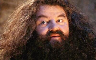 Těchto 10 zajímavostí jsi o Hagridovi možná nevěděl