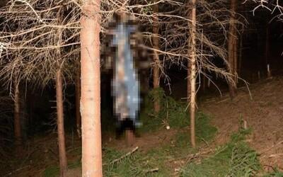 Tělo upáleného psa v pytli zavěsil na strom. Pachateli hrozí 2 roky vězení