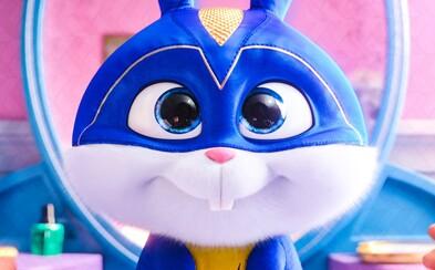 Tento roztomilý zajačik by sa nestratil ani medzi superhrdinami. Tajný život maznáčikov 2 víta mocnú posilu