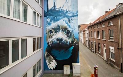 To najlepšie zo sveta street artu #9