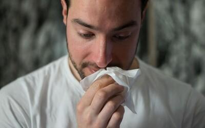 Toto je 6 internetových hacků na poražení alergie. Imunoložka nám prozradila, které z nich opravdu fungují