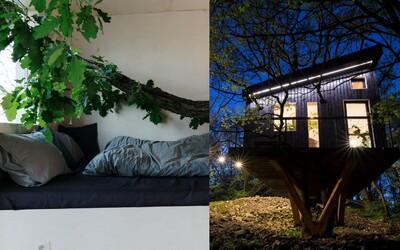 Toto sú najlepšie stavby za rok 2018: Prestížne ceny za architektúru CEZAAR získali dom so stromom vnútri či nádherné námestie