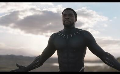 Traileru pre Black Panthera tlieskalo v stoji celé publikum na Comic Cone. Môžeme sa skutočne tešiť na celkom inú marvelovku?