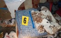 Traja 14 a 15-roční Slováci dobili mužov bez domova pre menej ako 12 eur. Útočili sekáčikom na mäso aj tyčou