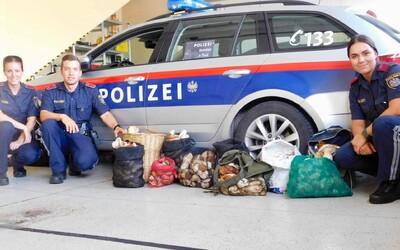 Traja Taliani si chceli z lesov odniesť vyše 60 kg hríbov, všetko im zhabala polícia a úlovok darovala dôchodcom